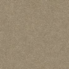 Shaw Floors Value Collections Fyc Ns Blue Net Honey Tea (s) 750S_5E020
