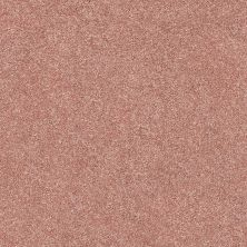 Shaw Floors Value Collections Fyc Ns Blue Net Open The Rose' (s) 802S_5E020