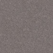Shaw Floors Value Collections Fyc Ns Blue Net Lilac Field (s) 901S_5E020
