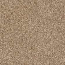 Shaw Floors SFA Fyc Tt I Net Falling Leaves (t) 720T_5E021
