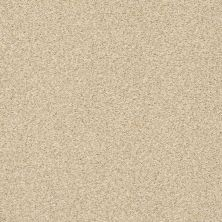 Shaw Floors SFA Fyc Tt II Net Sun Kissed (t) 110T_5E022