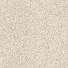 Shaw Floors SFA Fyc Tt II Net Vintage Quilt (t) 121T_5E022