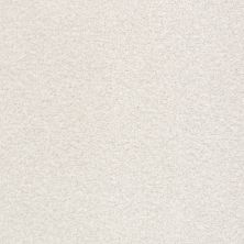 Shaw Floors Value Collections Fyc Tt II Net Clean Linen (t) 122T_5E022