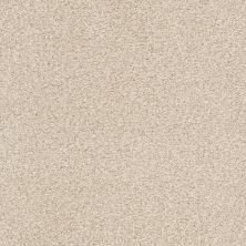 Shaw Floors Value Collections Fyc Tt II Net Happy Place (t) 123T_5E022