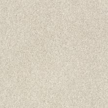 Shaw Floors Value Collections Fyc Tt II Net Homemade Ice Cream (t) 124T_5E022