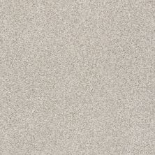Shaw Floors Value Collections Fyc Tt II Net Chill In The Air (t) 126T_5E022