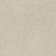 Shaw Floors Value Collections Fyc Tt II Net Sand Castle (t) 127T_5E022