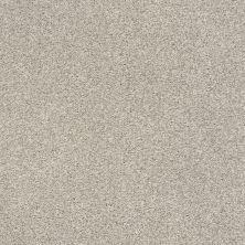 Shaw Floors SFA Fyc Tt II Net Shoreline Haze (t) 128T_5E022