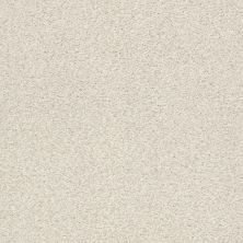 Shaw Floors Value Collections Fyc Tt II Net Champagne Toast (t) 153T_5E022