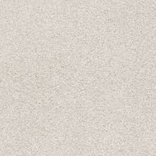 Shaw Floors Value Collections Fyc Tt II Net Whitewashed Frame (t) 154T_5E022