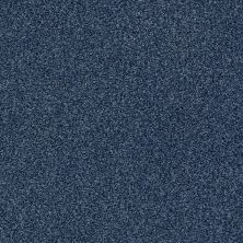 Shaw Floors Value Collections Fyc Tt II Net River Boat Ride (t) 432T_5E022