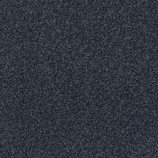 Shaw Floors Value Collections Fyc Tt II Net Star Gazing (t) 433T_5E022