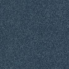 Shaw Floors Value Collections Fyc Tt II Net Twilight Golf (t) 434T_5E022