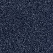 Shaw Floors Value Collections Fyc Tt II Net Sail Away (t) 436T_5E022