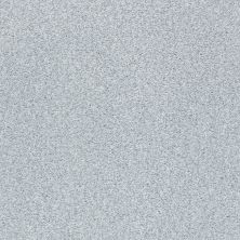 Shaw Floors Value Collections Fyc Tt II Net Winter Sky (t) 437T_5E022