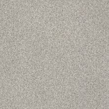 Shaw Floors SFA Fyc Tt II Net Restful Day (t) 512T_5E022