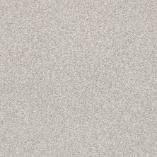 Shaw Floors Value Collections Fyc Tt II Net Quiet Time (t) 514T_5E022