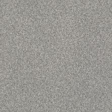 Shaw Floors Value Collections Fyc Tt II Net Cool Breeze (t) 525T_5E022