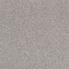 Shaw Floors Value Collections Fyc Tt II Net Whisper (t) 536T_5E022