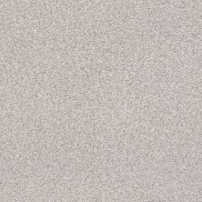 Shaw Floors Value Collections Fyc Tt II Net Dreamy (t) 537T_5E022
