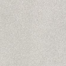 Shaw Floors Value Collections Fyc Tt II Net Morning Dew (t) 539T_5E022