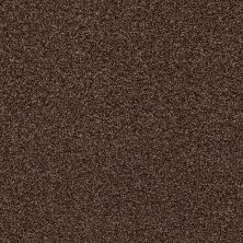 Shaw Floors SFA Fyc Tt II Net Chocolate Treat (t) 707T_5E022