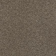 Shaw Floors Value Collections Fyc Tt II Net Summer House (t) 708T_5E022