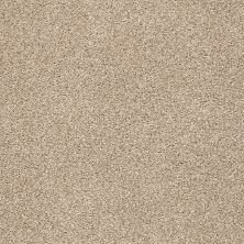 Shaw Floors Value Collections Fyc Tt II Net Walk On The Beach (t) 721T_5E022