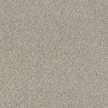 Shaw Floors Value Collections Fyc Tt II Net Back Patio (t) 724T_5E022
