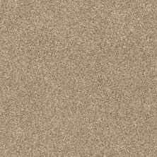 Shaw Floors SFA Fyc Tt II Net Honey Tea (t) 750T_5E022