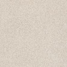 Shaw Floors Value Collections Fyc Tt II Net Subtle Blush (t) 800T_5E022