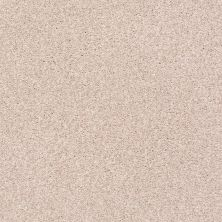 Shaw Floors Value Collections Fyc Tt II Net Soft Lullaby (t) 801T_5E022