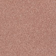 Shaw Floors Value Collections Fyc Tt II Net Open The Rose' (t) 802T_5E022