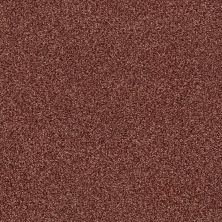 Shaw Floors Value Collections Fyc Tt II Net Serene Sunset (t) 804T_5E022