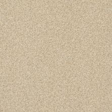 Shaw Floors SFA Fyc Tt Blue Net Sun Kissed (t) 110T_5E023