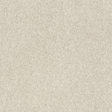 Shaw Floors Value Collections Fyc Tt Blue Net Homemade Ice Cream (t) 124T_5E023