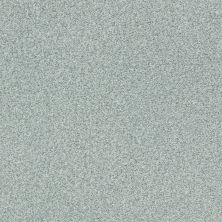 Shaw Floors Value Collections Fyc Tt Blue Net Distant Valley (t) 307T_5E023