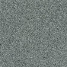 Shaw Floors Value Collections Fyc Tt Blue Net Cottage Garden (t) 308T_5E023