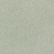 Shaw Floors Value Collections Fyc Tt Blue Net Willow Tree (t) 330T_5E023
