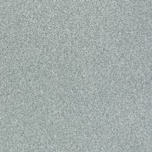 Shaw Floors SFA Fyc Tt Blue Net Water's Edge (t) 430T_5E023