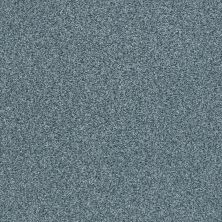 Shaw Floors SFA Fyc Tt Blue Net Tropical Hideaway (t) 431T_5E023