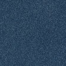 Shaw Floors SFA Fyc Tt Blue Net River Boat Ride (t) 432T_5E023