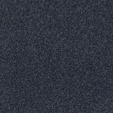 Shaw Floors Value Collections Fyc Tt Blue Net Star Gazing (t) 433T_5E023