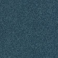Shaw Floors SFA Fyc Tt Blue Net Twilight Golf (t) 434T_5E023