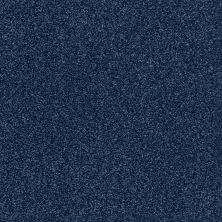 Shaw Floors Value Collections Fyc Tt Blue Net Sail Away (t) 436T_5E023