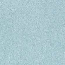 Shaw Floors Value Collections Fyc Tt Blue Net Winter Sky (t) 437T_5E023