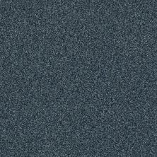 Shaw Floors SFA Fyc Tt Blue Net Washed Indigo (t) 440T_5E023