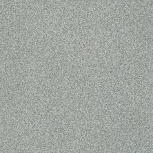 Shaw Floors Value Collections Fyc Tt Blue Net Restful Day (t) 512T_5E023