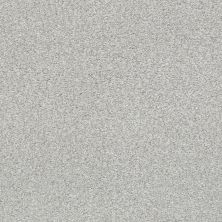 Shaw Floors SFA Fyc Tt Blue Net Dreamy (t) 537T_5E023