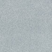 Shaw Floors Value Collections Fyc Tt Blue Net Polished Silver (t) 538T_5E023